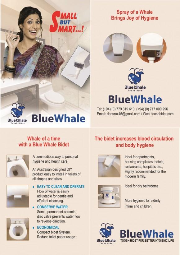 Blue Whale Leaflet